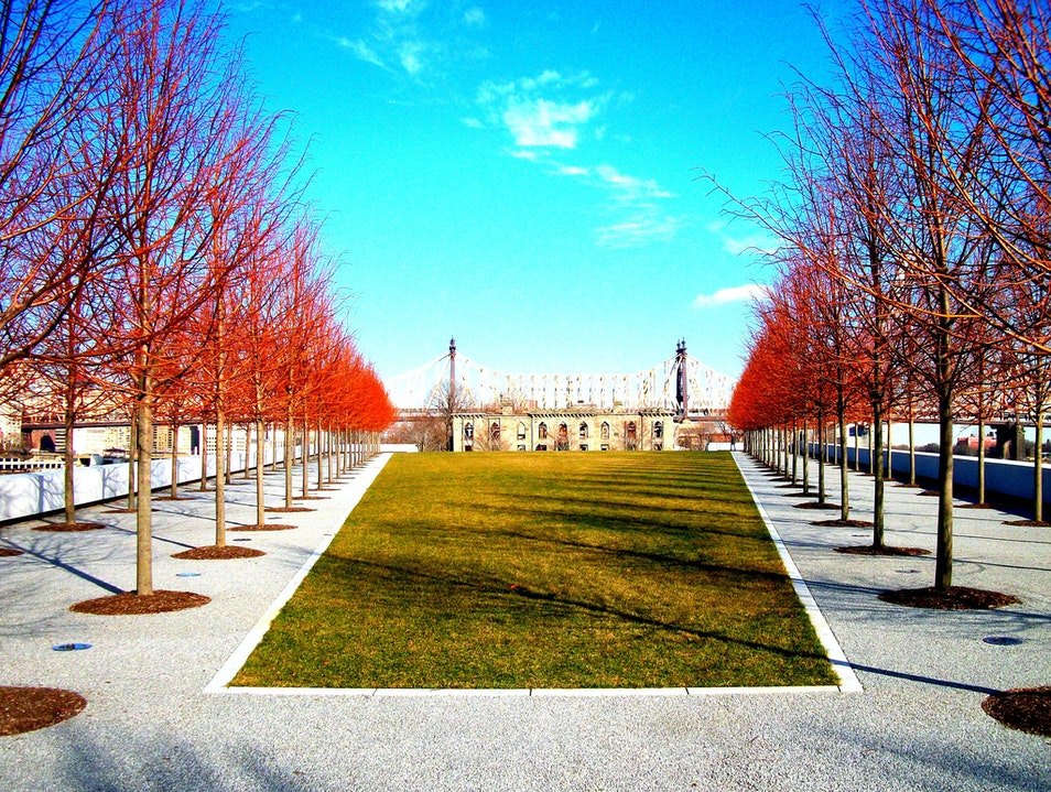 Taking in the Sights and Sounds in Four Freedoms Park New York New York United States