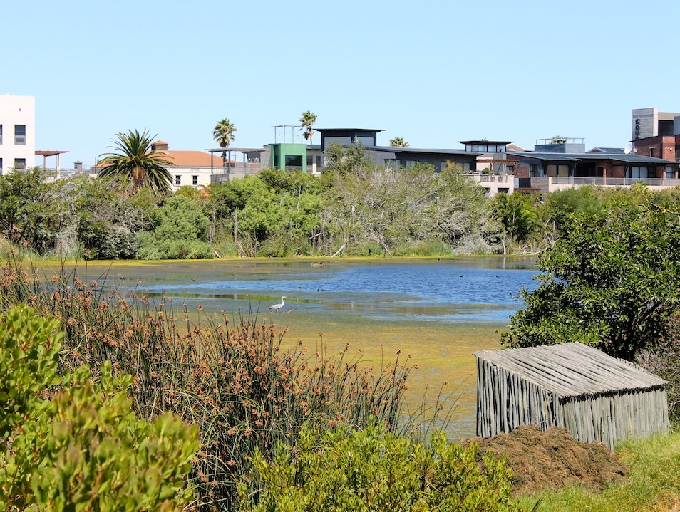 Blending Conservation with Community Development Cape Town  South Africa