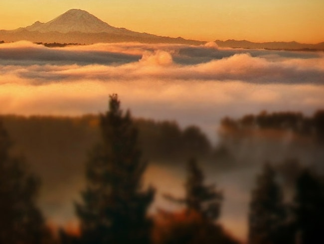 Above the fog, on top of the world