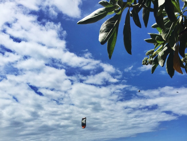 Learn to Fly in Maui
