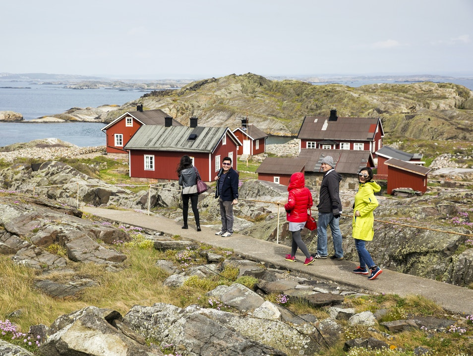 Learn About Sweden's Marine Life