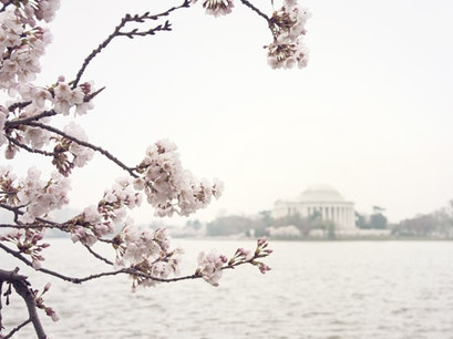 Thomas Jefferson Memorial Washington, D.C. District of Columbia United States