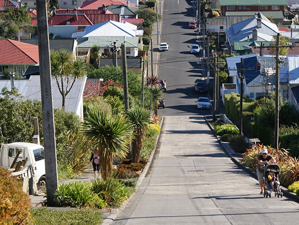 Baldwin Street Dunedin  New Zealand