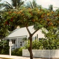 Audubon House Key West Florida United States
