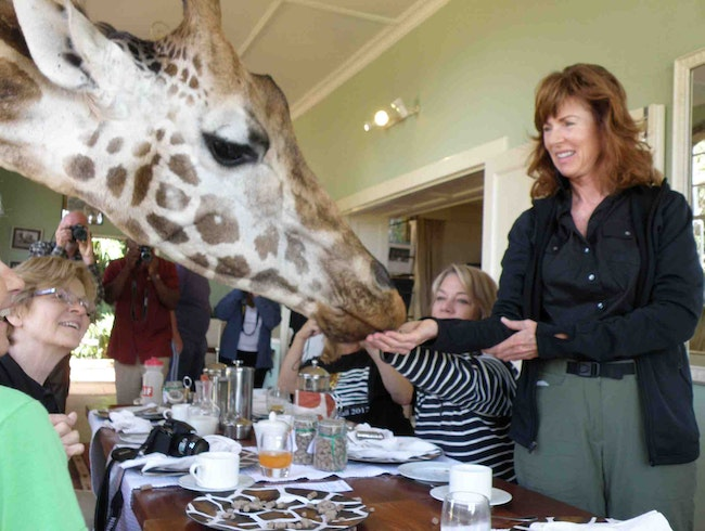 Dining with Giraffes