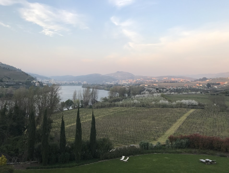 Heaven in Wine Country