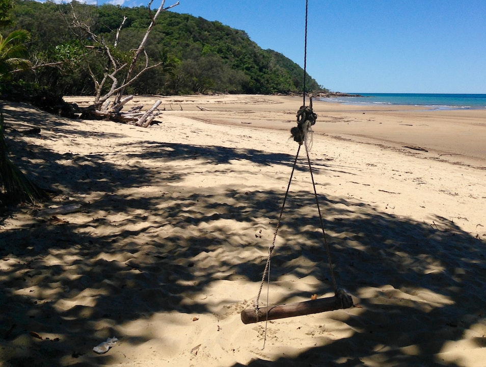 Swing From a Palm Tree Cow Bay  Australia