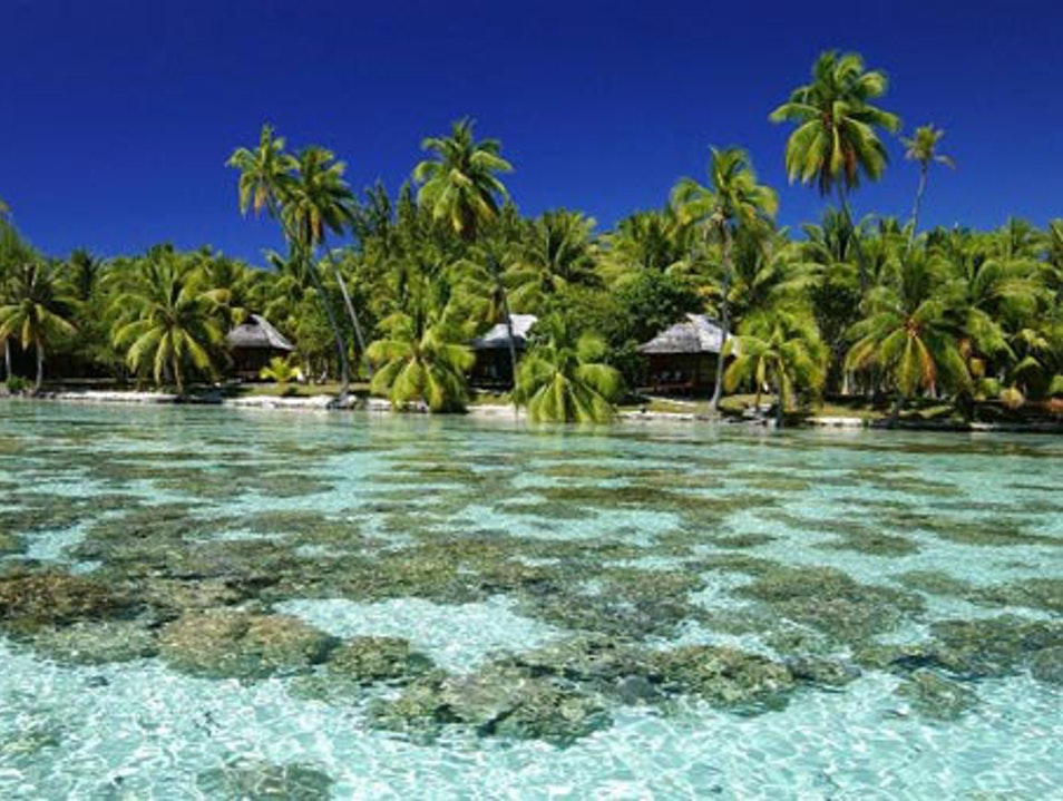 The Serene Vahine Private Island Resort   French Polynesia