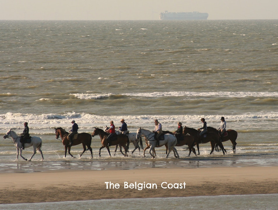 Trotting Along the Belgian Coast De Panne  Belgium