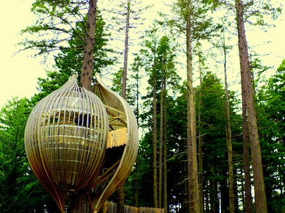 Redwood Treehouse Warkworth  New Zealand
