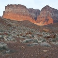 Paria Canyon-Vermilion Cliffs Wilderness Area Marble Canyon Arizona United States