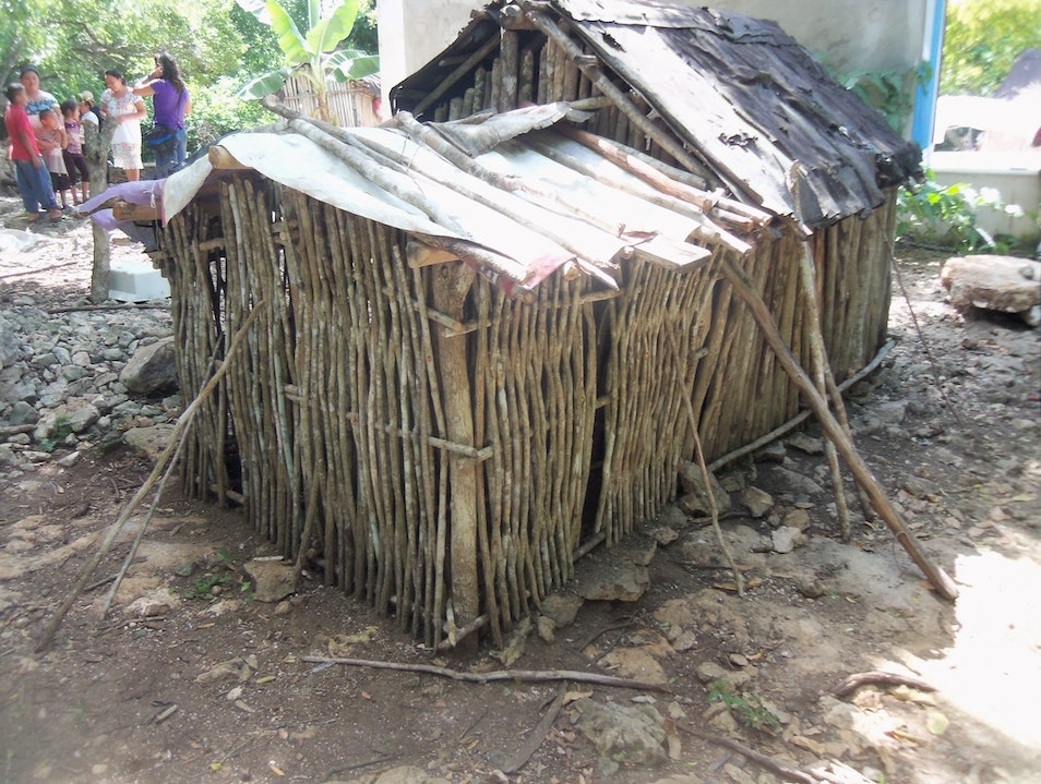 Chicken Coop, Learning AFAR