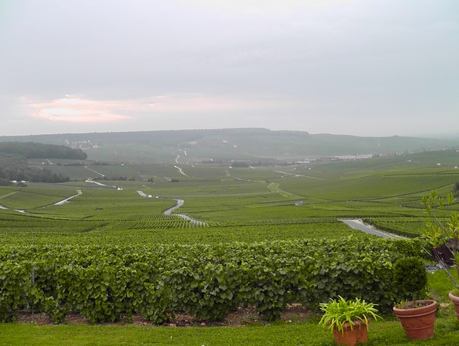 A beautiful spot for Champagne tasting