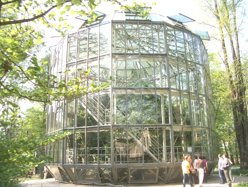 Glass house for Mulberry Tree Dresden  Germany