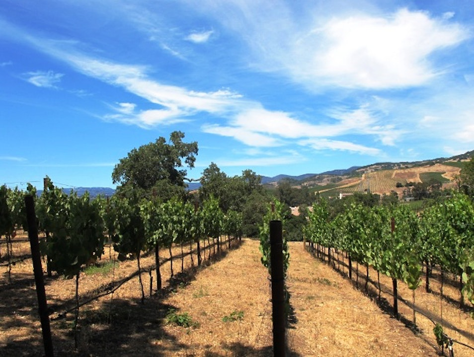 Hiking in Napa Valley Napa California United States