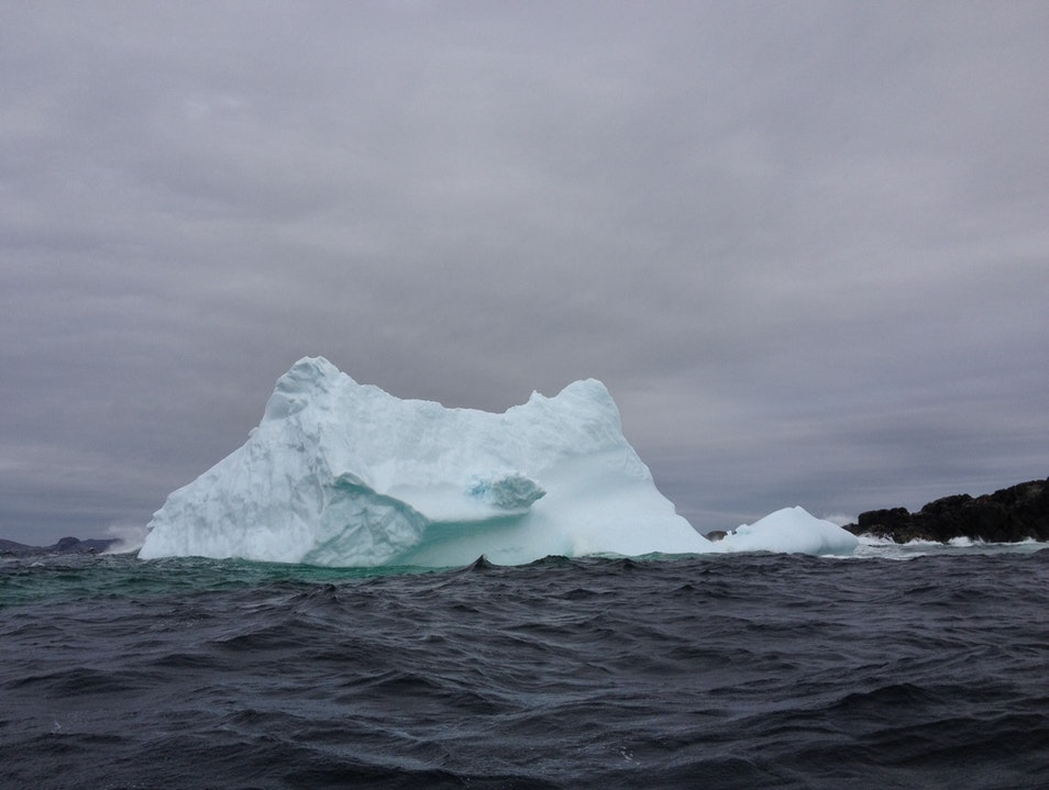 Iceberg Hunting Joe Batt's Arm  Canada