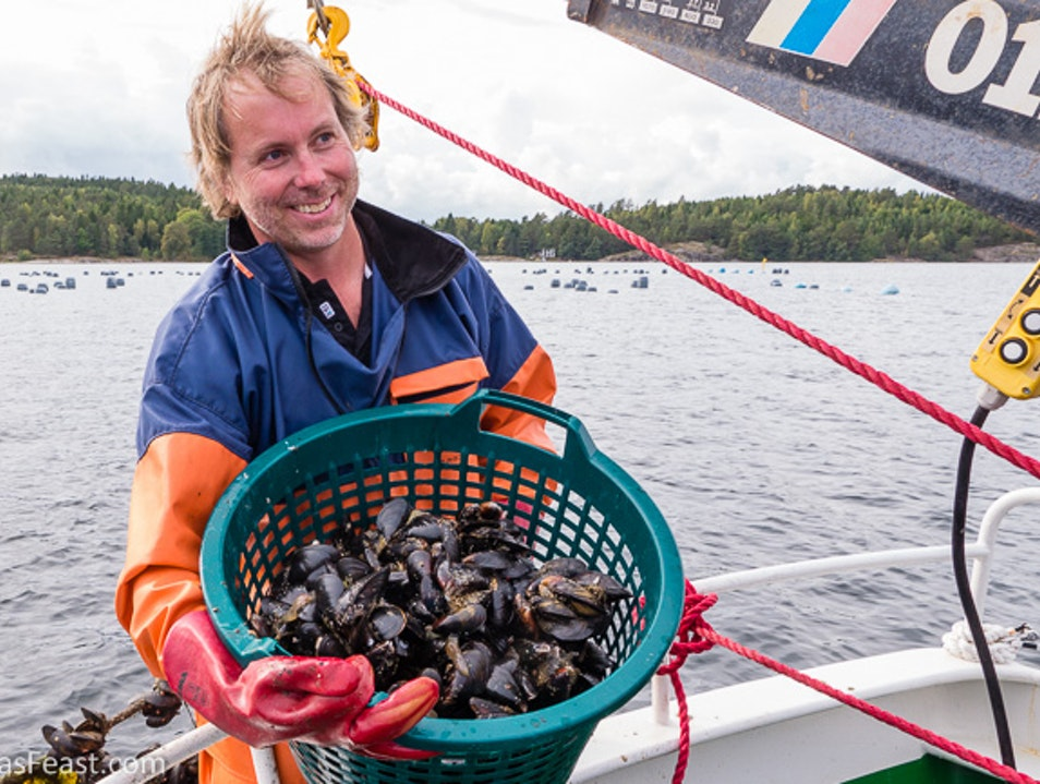 The world's freshest mussels!
