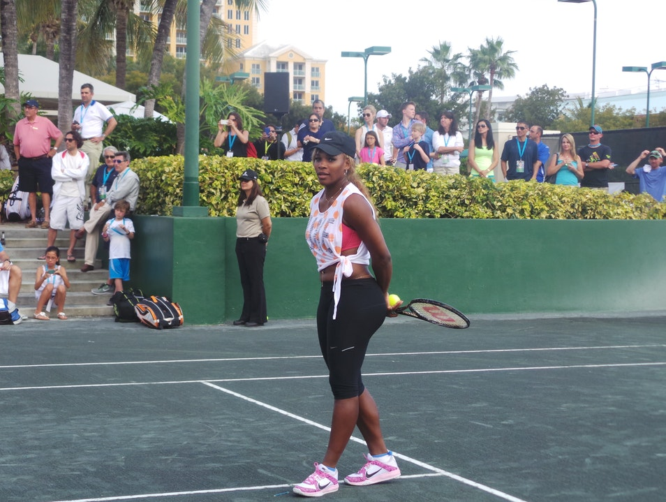 Tennis Stars at the Sony Open on Key Biscayne