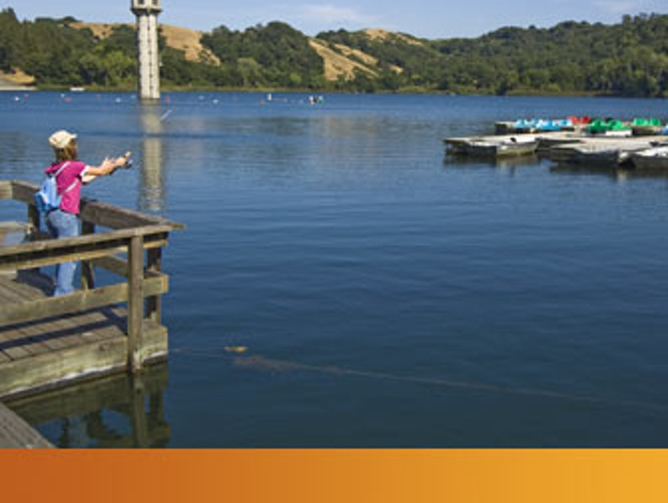 Reel in a trout at Lafayette Reservoir