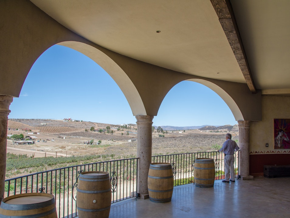 Bold Red Wines With a View