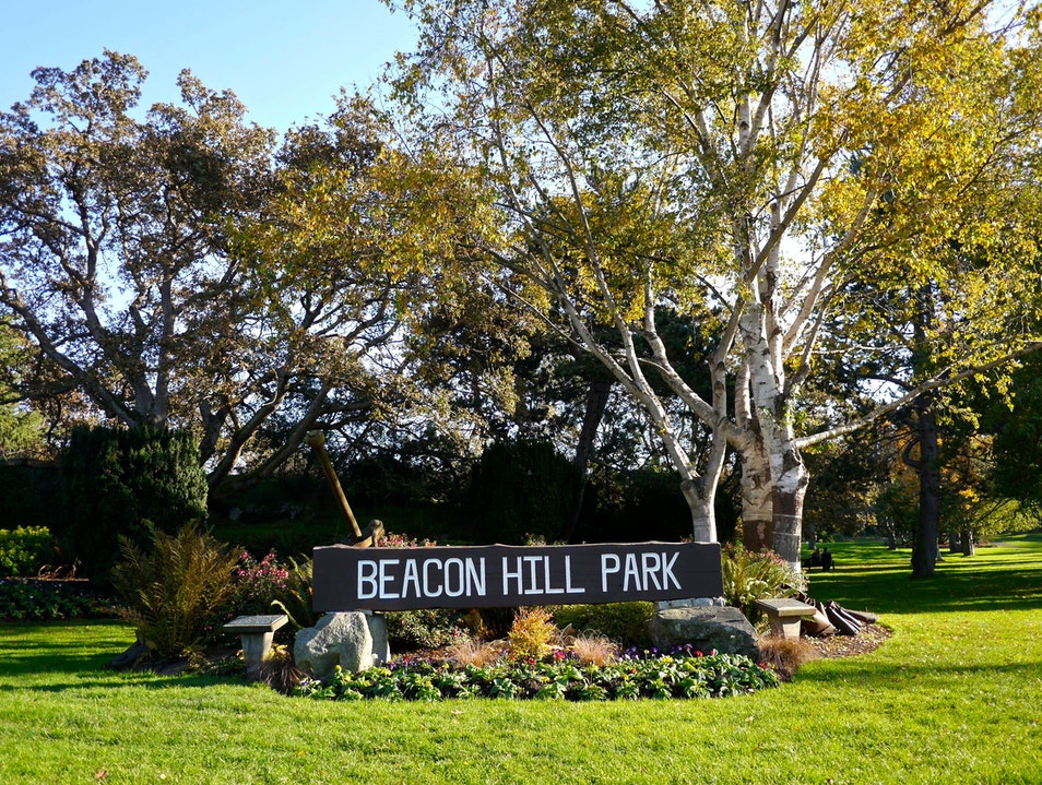 Beacon Hill Park: A Gorgeous City Park in Victoria, Canada