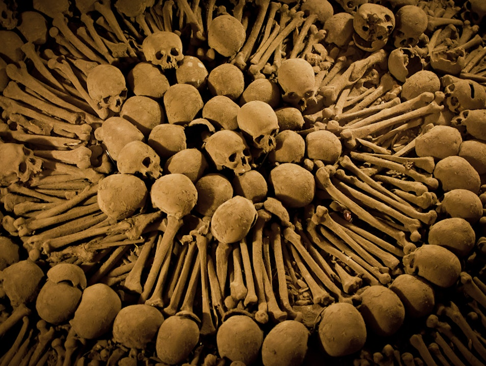 The Lovely Bones Lima  Peru