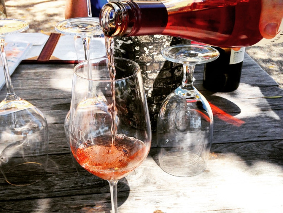 Learning about biodynamic vineyards