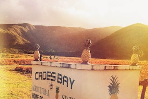 Cades Bay Agricultural Station