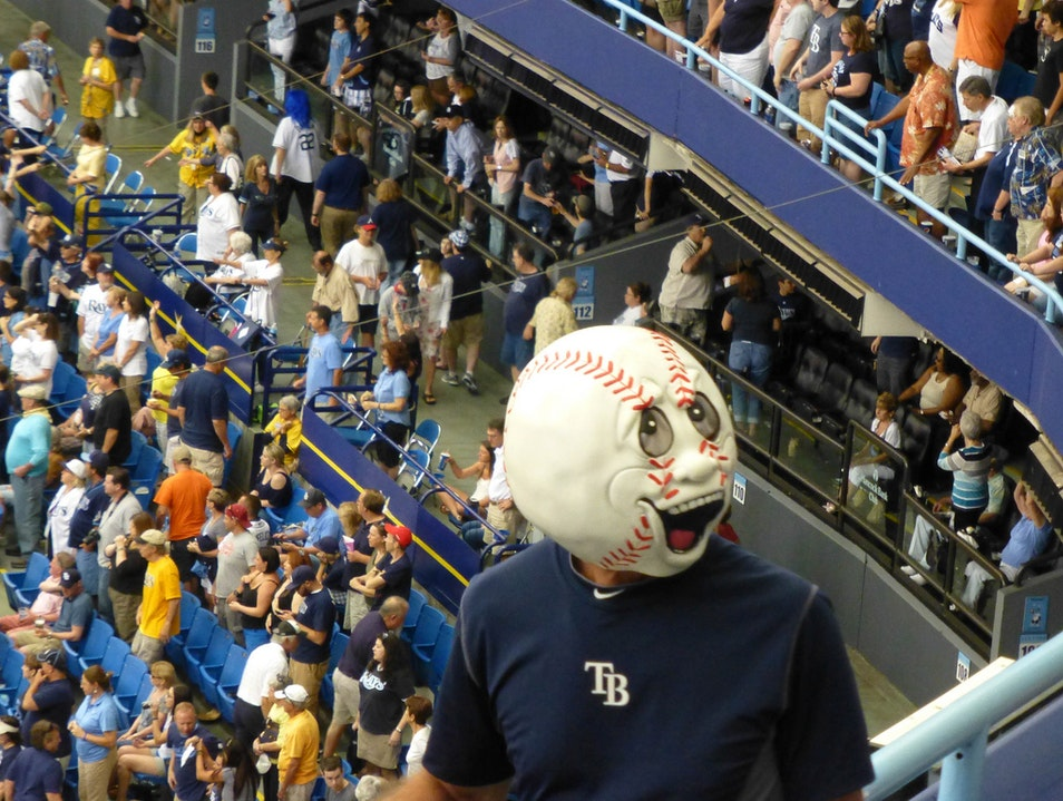 Come, Watch the Rays Play in Air-conditioned Comfort St. Petersburg Florida United States