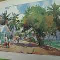 Pure Art Gallery & Gifts George Town  Cayman Islands