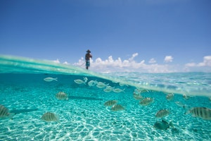 Dive Among Pearls in The Tuamotu Atolls