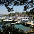 The Yacht Week Stari Grad  Croatia