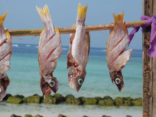 Fish Racks on Agatti Island