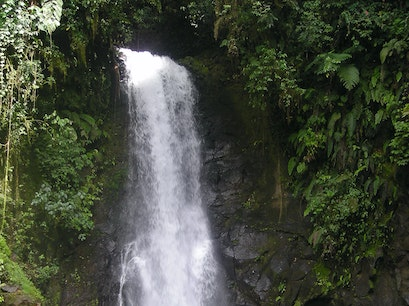 La Paz Waterfall Gardens Heredia  Costa Rica