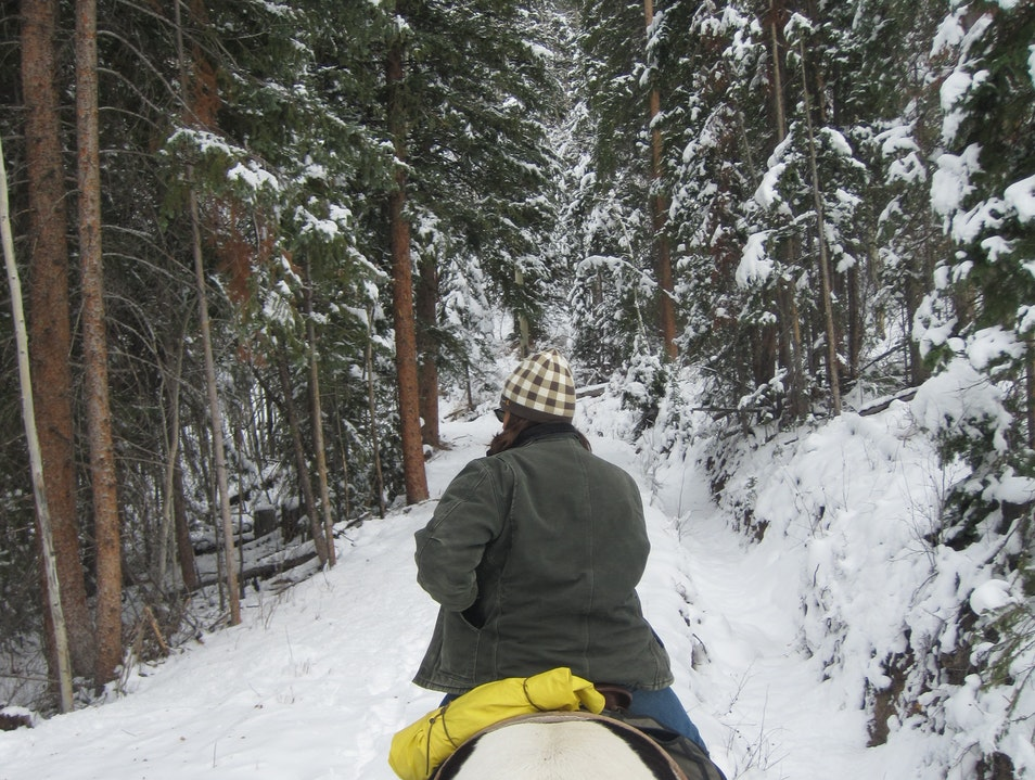 A Snowy Autumn Horseback Ride