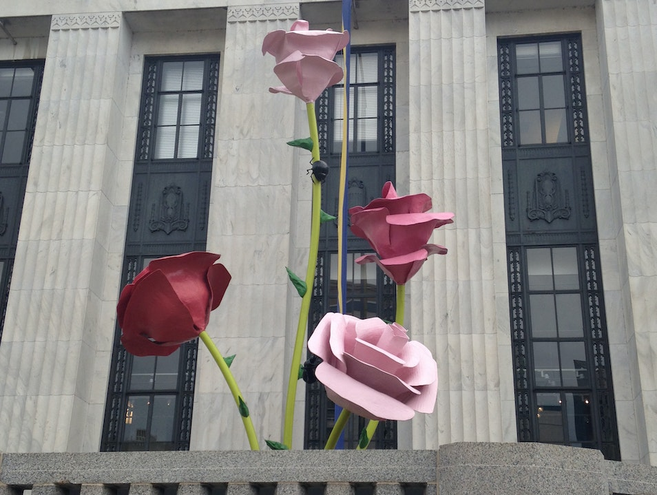 The Arts on Display at Frist Center