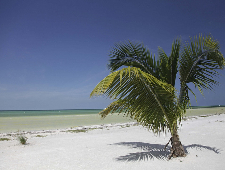 Go off Grid in Isla Holbox