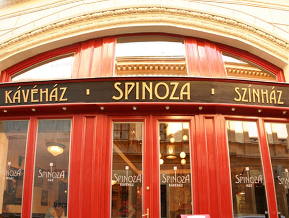 Spinoza for classic cafe and art