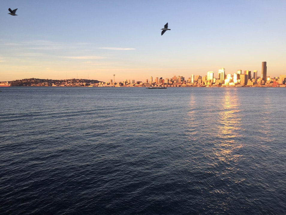 A View Without Crowds  Seattle Washington United States