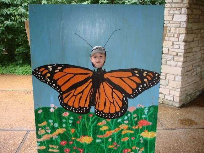 Butterfly Exhibit at Olbrich Botanical Gardens