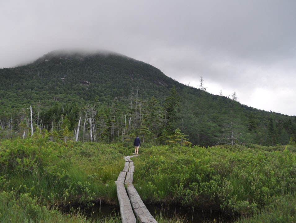 Up in the Mountains, a Walk around Lonesome Lake Franconia New Hampshire United States