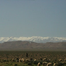 Roses Valley, Morocco