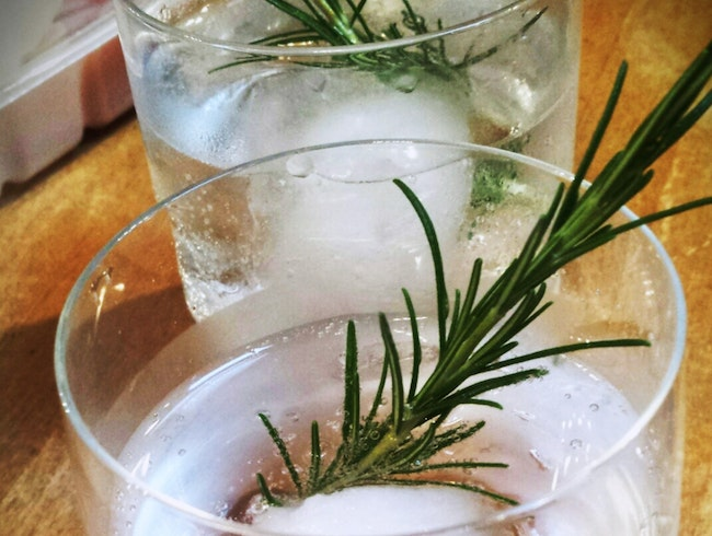 Gin Cocktails at Scofflaw