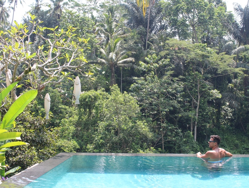 One of the best things to do in Bali