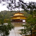 Golden Pavilion House Kyoto  Japan