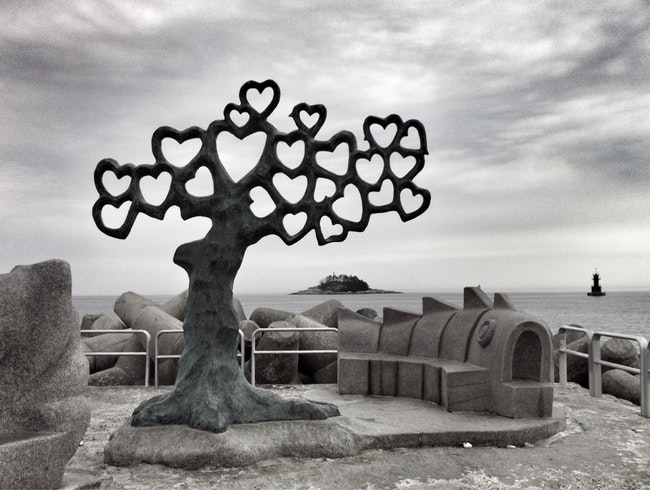 Tree of Hearts on the Jetty