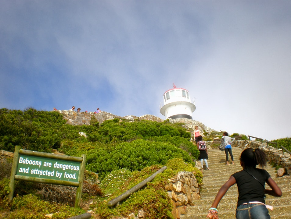 Up in the Clouds at Cape Point Cape Town  South Africa