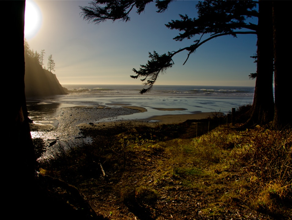 The Best Of Both Worlds - Forest and Beach Nehalem Oregon United States