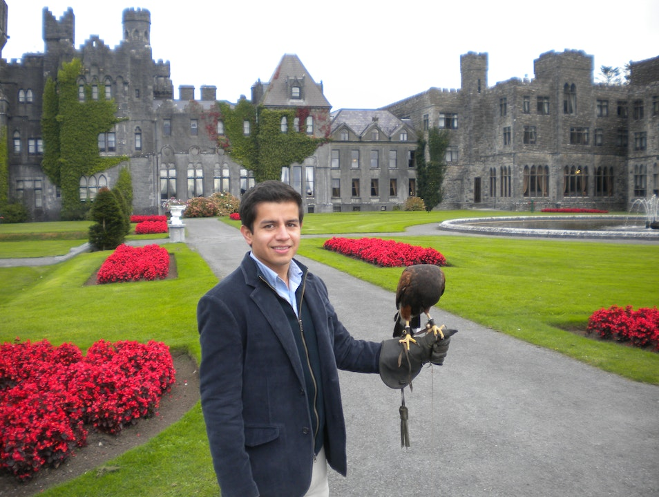 Ireland's First School of Falconry The Derries  Ireland