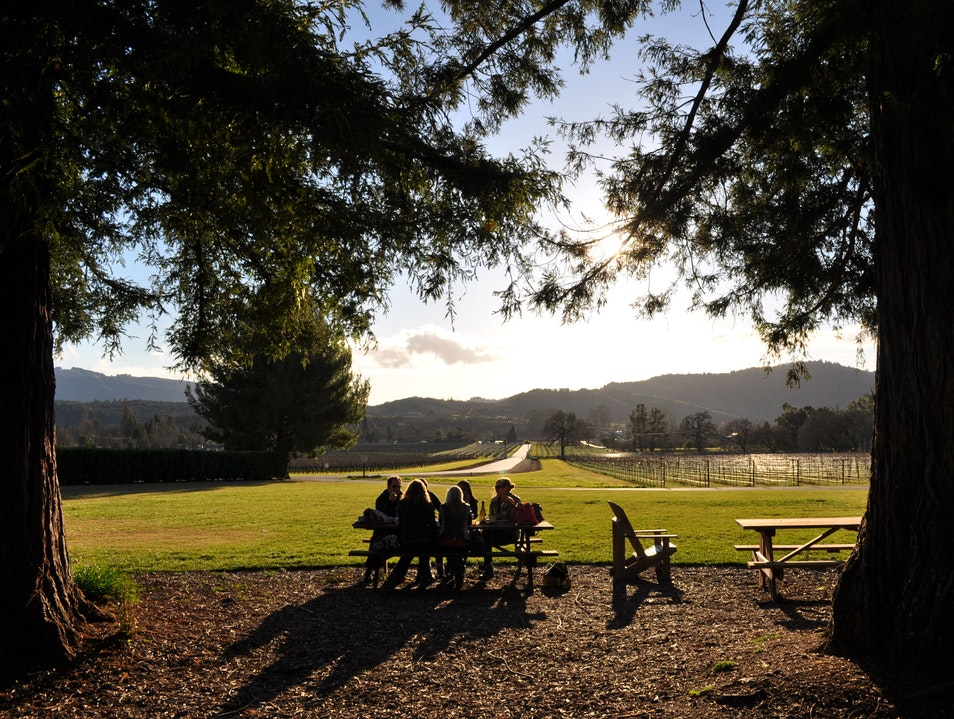 A Golden Picnic in Sonoma Kenwood California United States